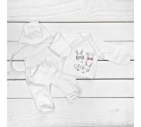 Комплект з трьох предметів сорочечка повзунки чепчик Зая
